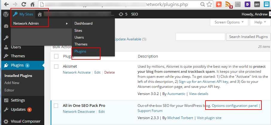 aiseo-network-admin-options.jpg